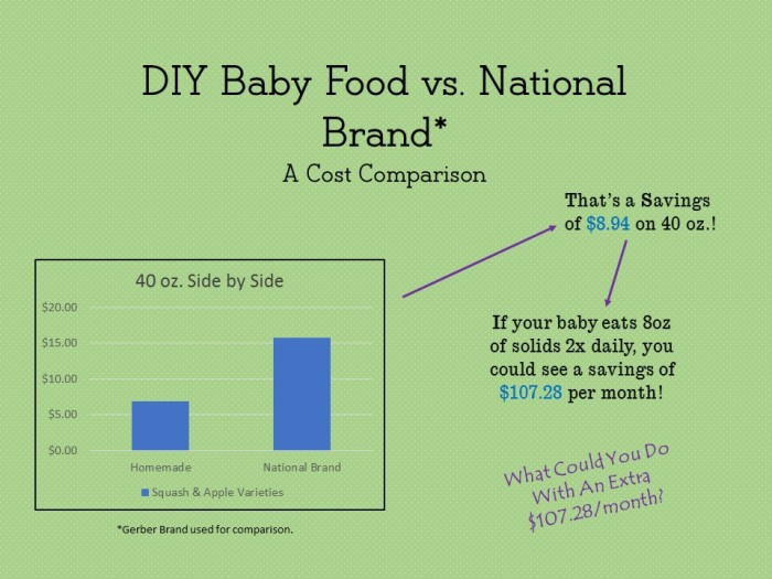 Baby Food Cost Comparison